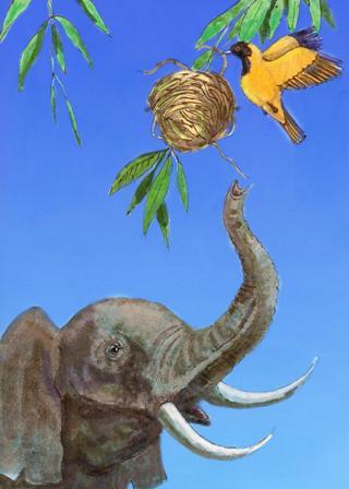 Птичка и слон  Сказка в стиха