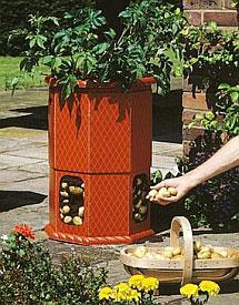 Potato-barrels.jpg