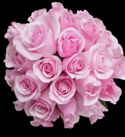 цветы2.jpg