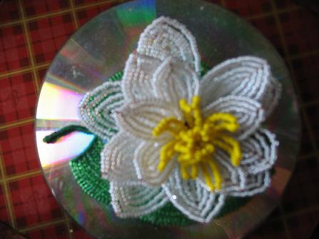 Кувшинка.  Сообщение отредактировал MaryJane: 05 Ноябрь 2007 - 20:02.  Меня зовут.
