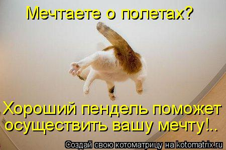 post-21929-1261811661.jpg