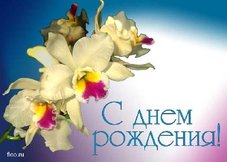 post-22527-1294857564_thumb.jpg