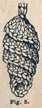 crochet_dentelle_fig5.jpg