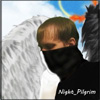 Night_Pilgrim